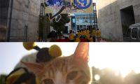 第9届本土动漫创作作品报道 广州COSER很给力