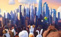 《爱宠大机密》有望于8月2日与观众见面