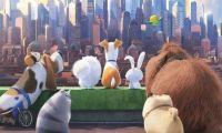 动画电影《爱宠大机密》正式定档8月2日