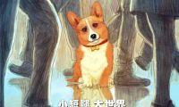 """《一条叫王子的狗》""""倒影""""版海报发布 开启小短腿历险记"""