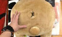 日本发售一款熊菊花靠垫