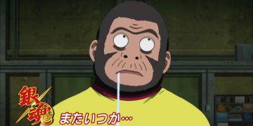 空知猩猩:电影卖得好我也没有钱