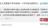 盗版泛滥是制约中国动漫产业链延伸的关键因素