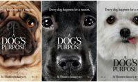 环球影业新作《一条狗的使命》再次公开角色版海报
