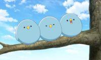 TV动画《妖怪公寓的幽雅日常》三只鸟成为热门话题