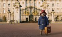 法国电影公司Studio canal将制作真人CG结合电影《帕丁顿熊》