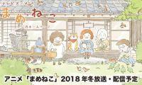 电视动画《豆猫》官方公开预告