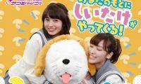 《LoveLive!Sunshine!!》官方推出1/1大小的小香菇布偶