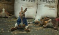 真人CG电影《比得兔》2月9日北美上映