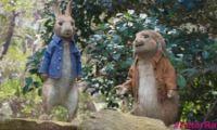 真人版《比得兔》新预告公开