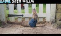 真人版《比得兔》电影官方公开新的片段