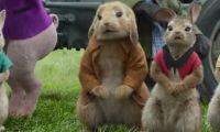 电影《比得兔》官方又公开新预告