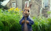 真人动画电影《比得兔》独家影评 生动活泼匠心十足