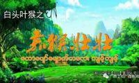 《白头叶猴之嘉猴壮壮》登陆缅甸国家广播电视台