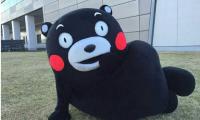 熊本熊进军动画界首部全新动画正式公开