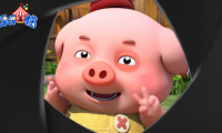 """半年吸粉800万!流量直逼当红明星的新晋网红""""豆豆猪""""辉煌成名路"""