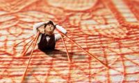 天空之城——久石让&宫崎骏经典动漫作品视听亲子音乐会将奏响