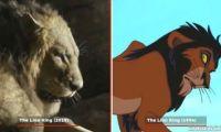 真狮版《狮子王》对比94年动画原版 辛巴还原度爆表