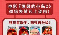 """動畫電影《憤怒的小鳥2》全陣容""""出演""""表情包"""