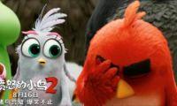 动画电影《愤怒的小鸟2》将于8月16日全国上映