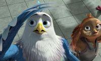 国产动画电影 《老鹰抓小鸡》发布定档预告及海报